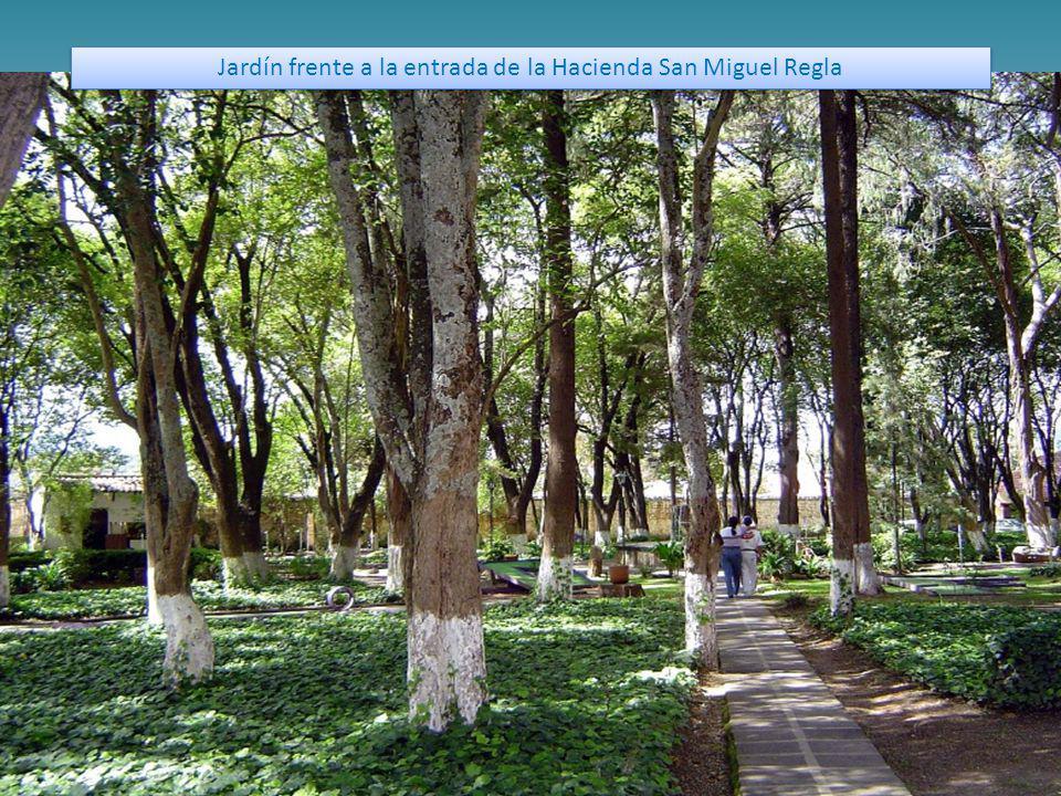 Jardín frente a la entrada de la Hacienda San Miguel Regla