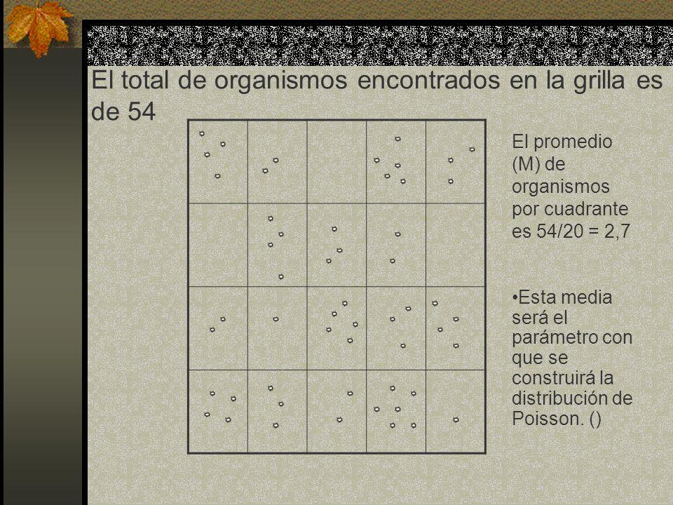 El total de organismos encontrados en la grilla es de 54
