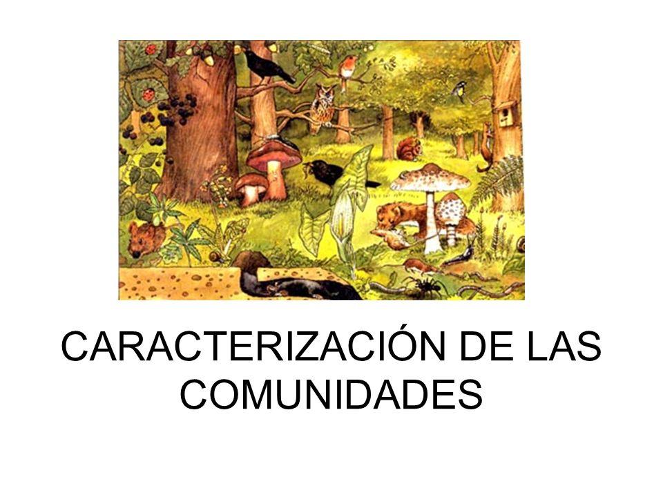 CARACTERIZACIÓN DE LAS COMUNIDADES