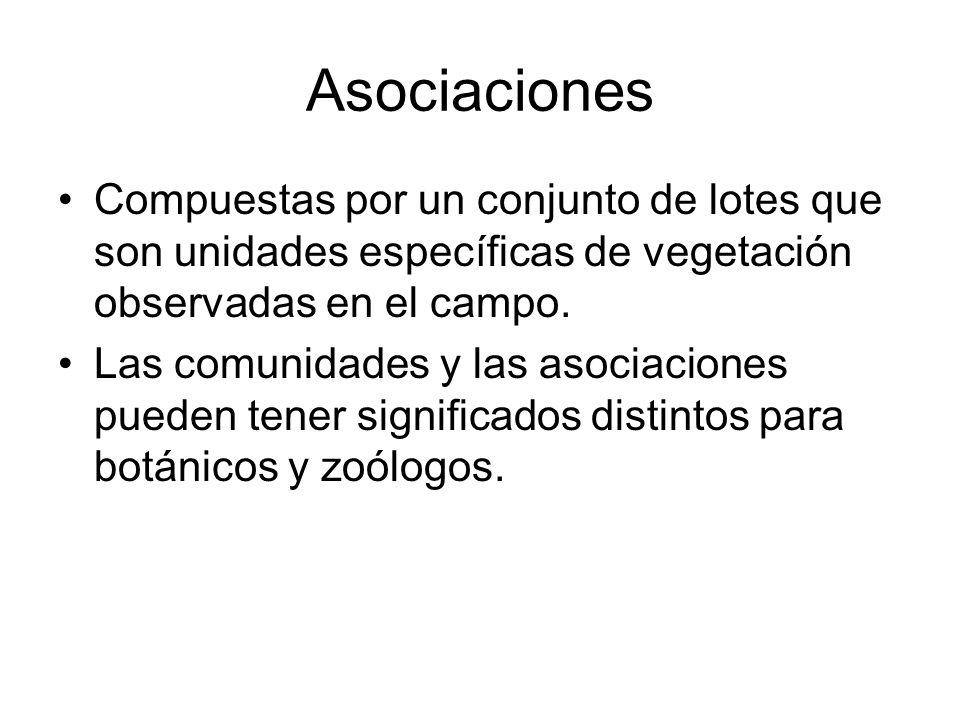 AsociacionesCompuestas por un conjunto de lotes que son unidades específicas de vegetación observadas en el campo.