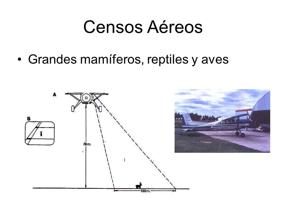 Censos Aéreos Grandes mamíferos, reptiles y aves