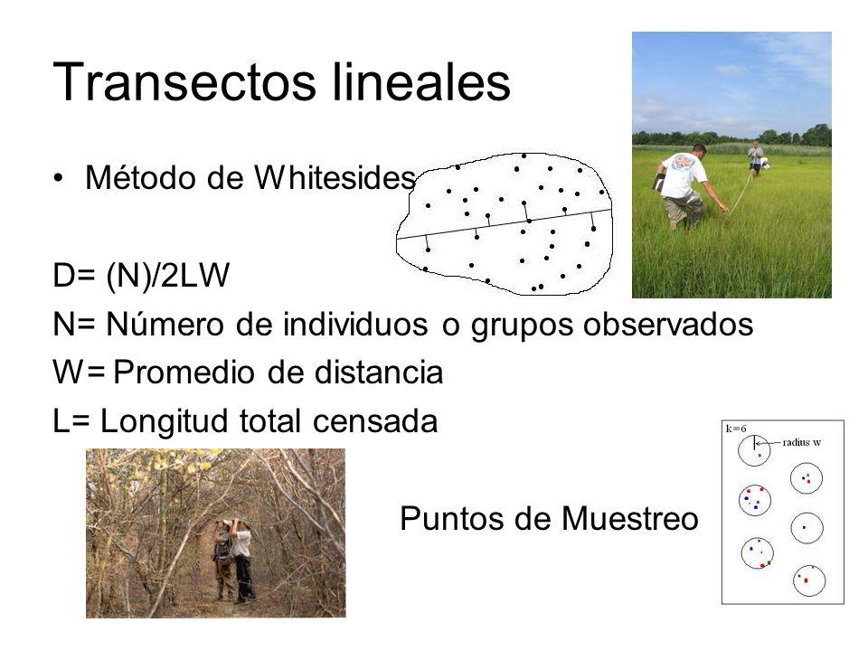 Transectos lineales Método de Whitesides D= (N)/2LW