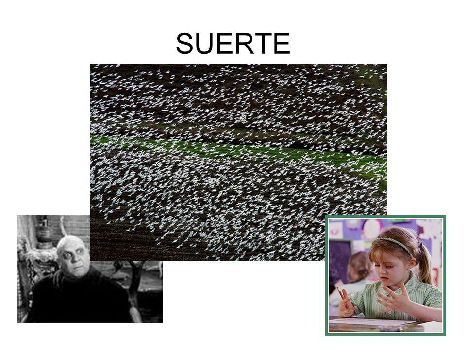 SUERTE