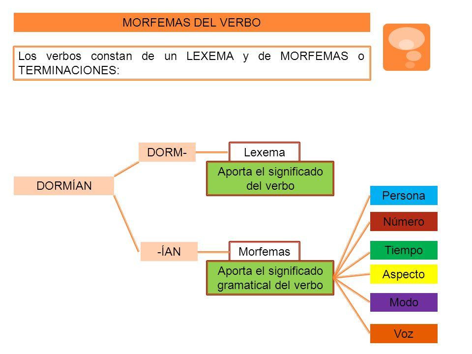 Los verbos constan de un LEXEMA y de MORFEMAS o TERMINACIONES: