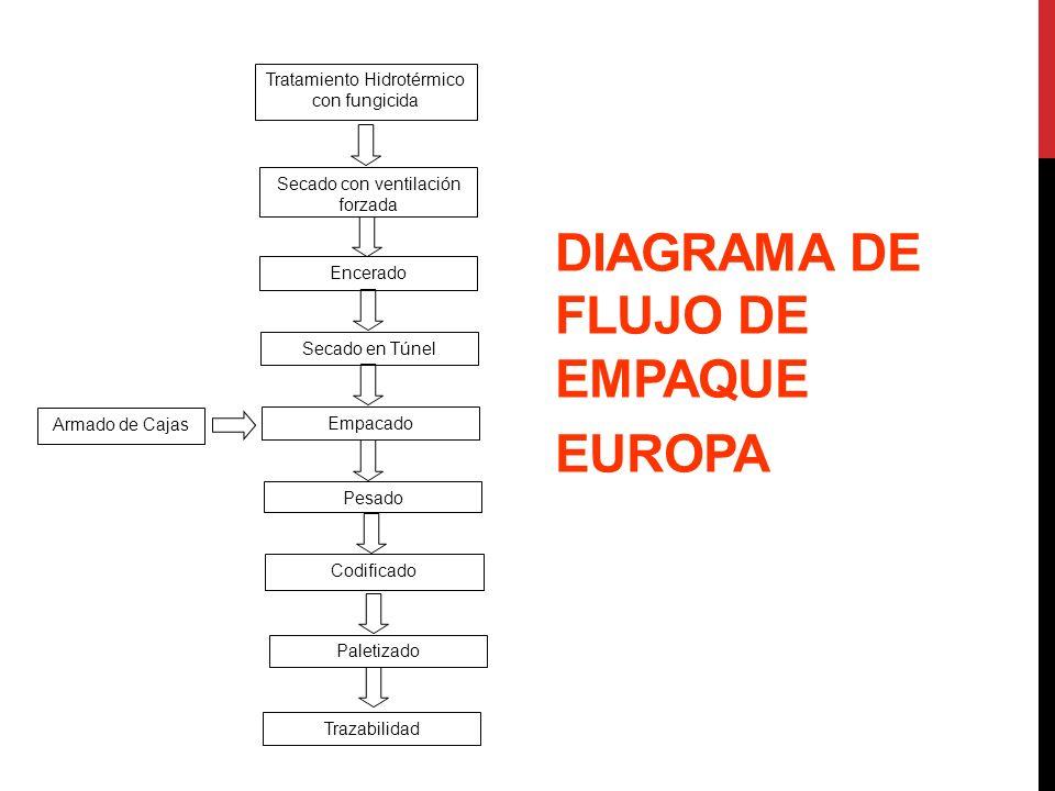DIAGRAMA DE FLUJO DE EMPAQUE EUROPA