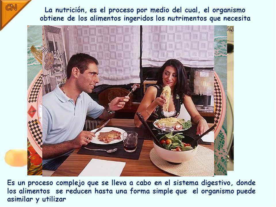 La nutrición, es el proceso por medio del cual, el organismo obtiene de los alimentos ingeridos los nutrimentos que necesita