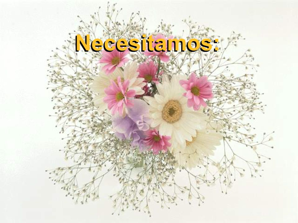 Necesitamos: