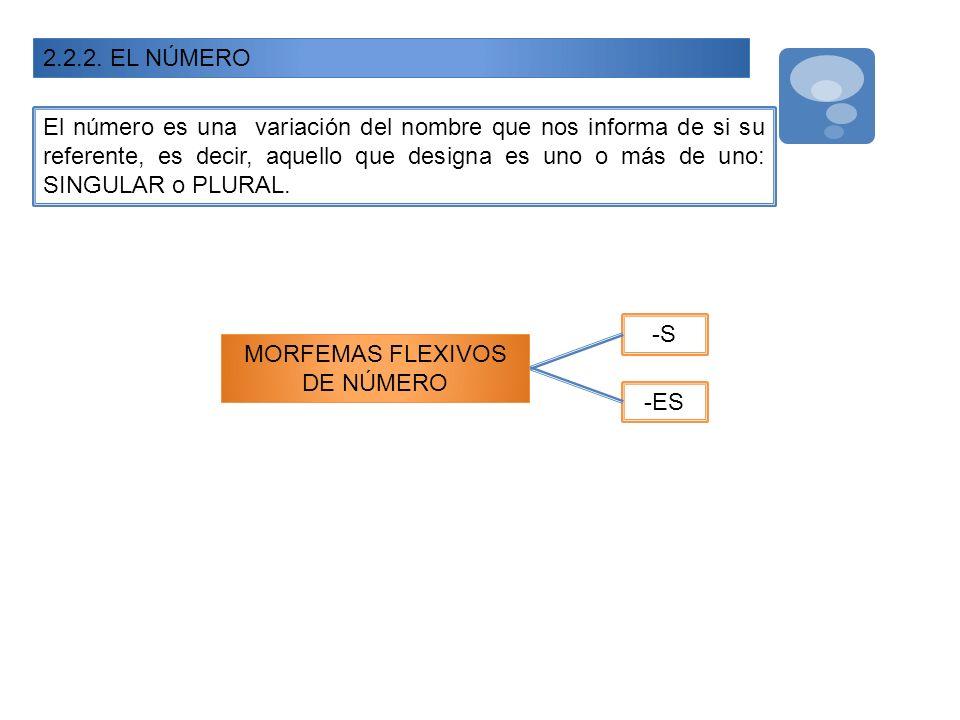 MORFEMAS FLEXIVOS DE NÚMERO