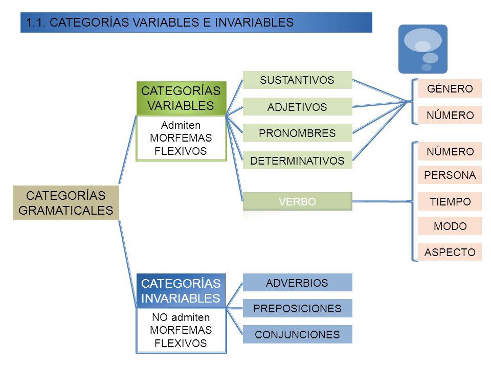 1.1. CATEGORÍAS VARIABLES E INVARIABLES