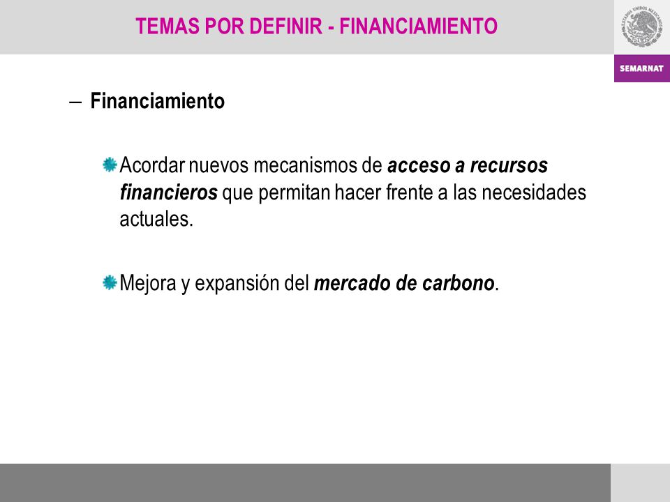 TEMAS POR DEFINIR - FINANCIAMIENTO