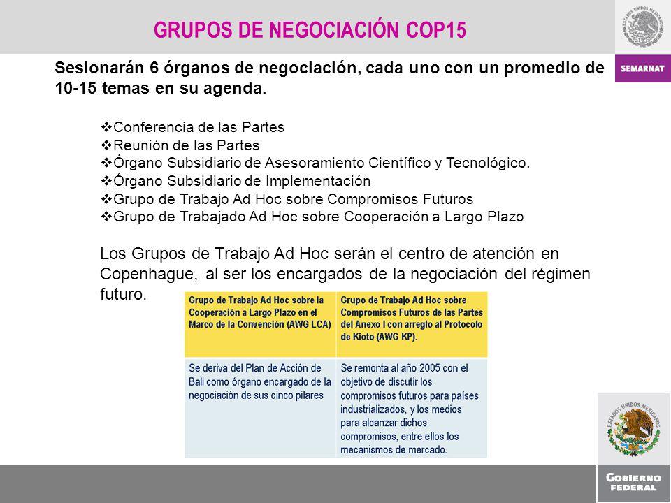 GRUPOS DE NEGOCIACIÓN COP15