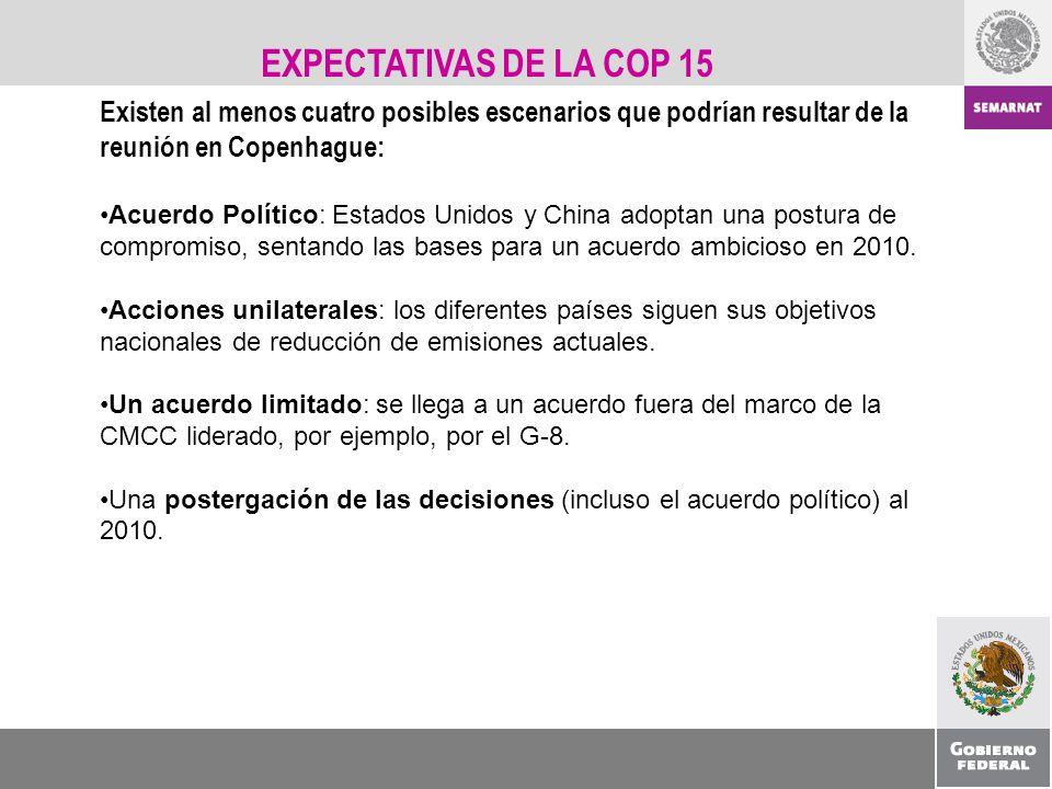 EXPECTATIVAS DE LA COP 15 Existen al menos cuatro posibles escenarios que podrían resultar de la reunión en Copenhague: