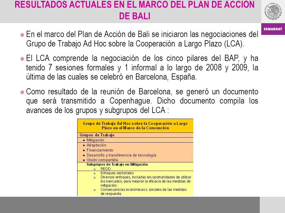 RESULTADOS ACTUALES EN EL MARCO DEL PLAN DE ACCIÓN DE BALI