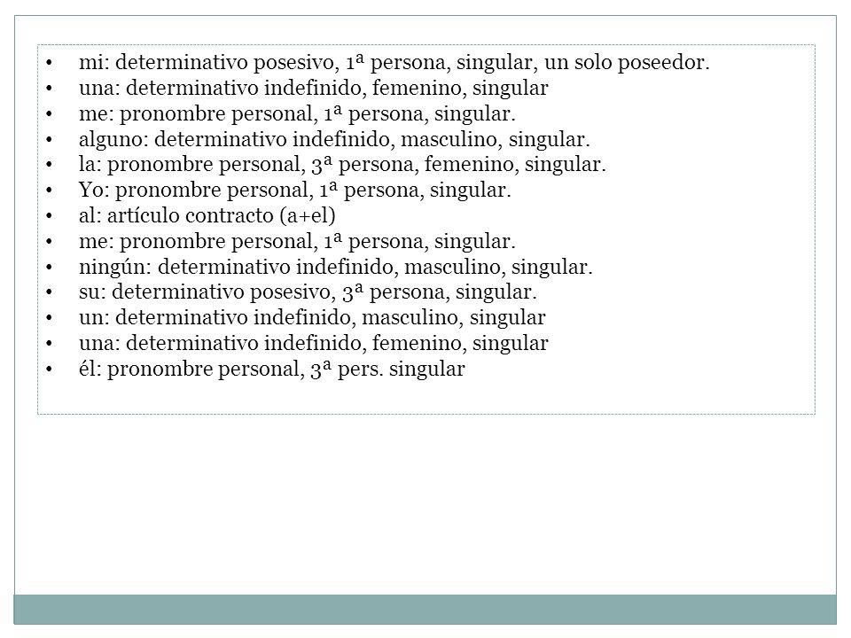 mi: determinativo posesivo, 1ª persona, singular, un solo poseedor.
