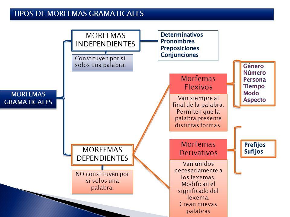 TIPOS DE MORFEMAS GRAMATICALES