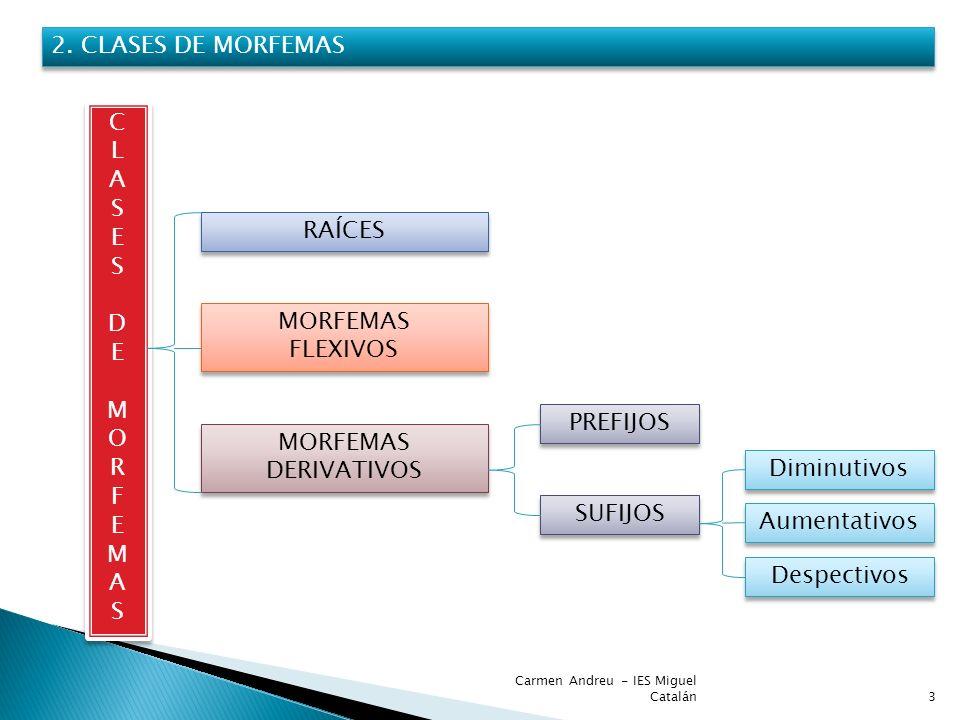 2. CLASES DE MORFEMAS C L A S E D RAÍCES M O R F MORFEMAS FLEXIVOS