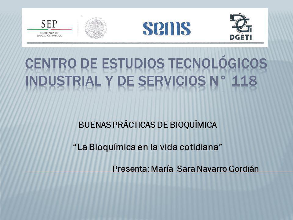 Centro de Estudios Tecnológicos Industrial y de Servicios N° 118