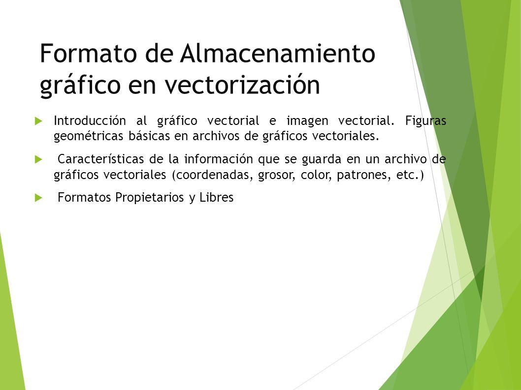 Formato de Almacenamiento gráfico en vectorización