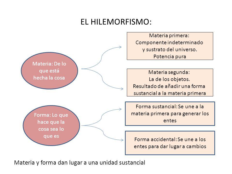 EL HILEMORFISMO: Materia y forma dan lugar a una unidad sustancial