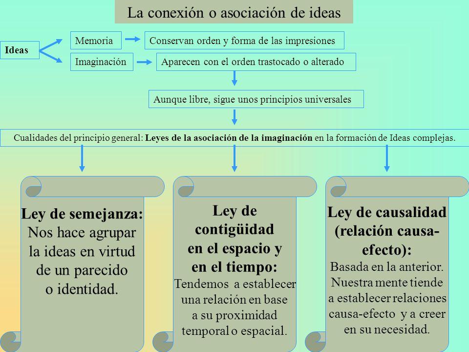 La conexión o asociación de ideas
