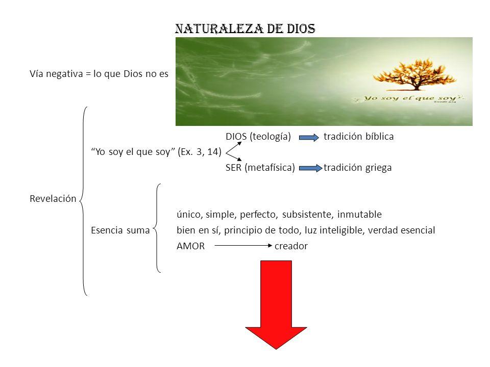 Naturaleza de dios Vía negativa = lo que Dios no es