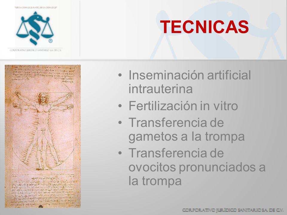 TECNICAS Inseminación artificial intrauterina Fertilización in vitro