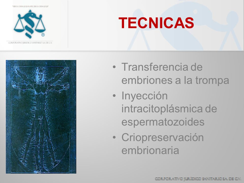TECNICAS Transferencia de embriones a la trompa
