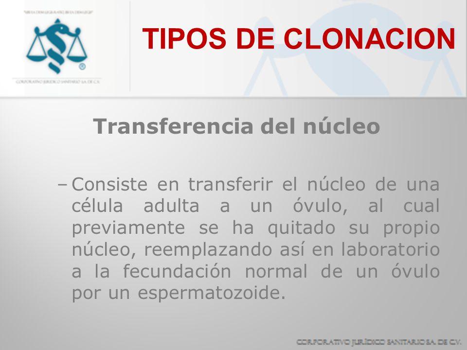 Transferencia del núcleo