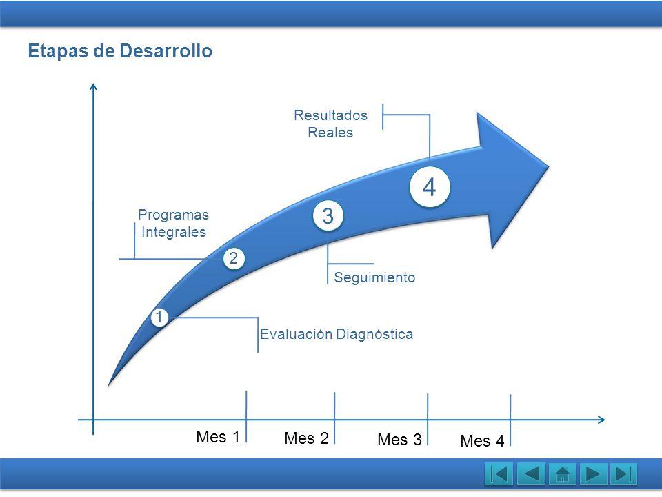 4 3 Etapas de Desarrollo Evaluación 2 1 Mes 1 Mes 2 Mes 3 Mes 4