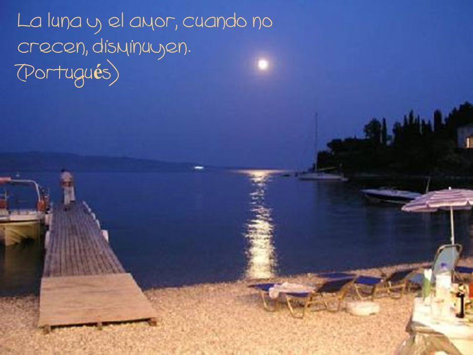 La luna y el amor, cuando no crecen, disminuyen. (Portugués)