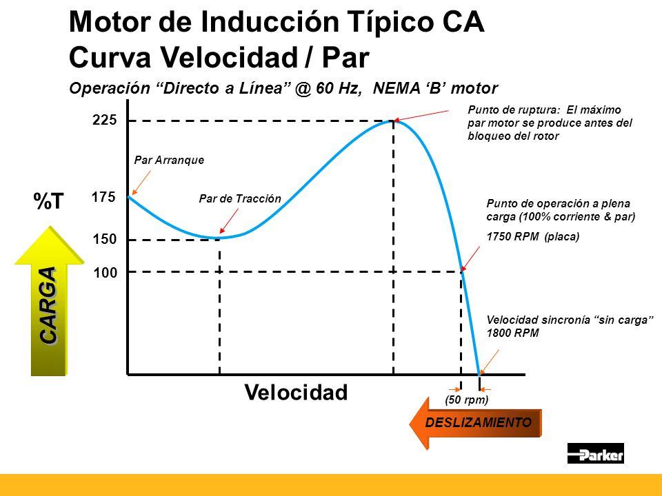 Motor de Inducción Típico CA Curva Velocidad / Par