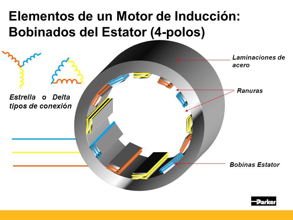 Elementos de un Motor de Inducción: Bobinados del Estator (4-polos)