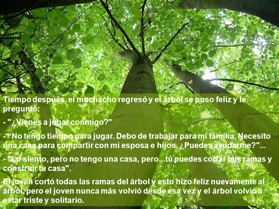 Tiempo después, el muchacho regresó y el árbol se puso feliz y le preguntó:
