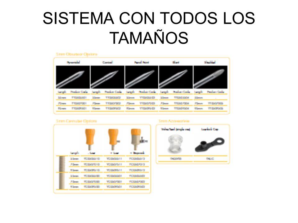 SISTEMA CON TODOS LOS TAMAÑOS