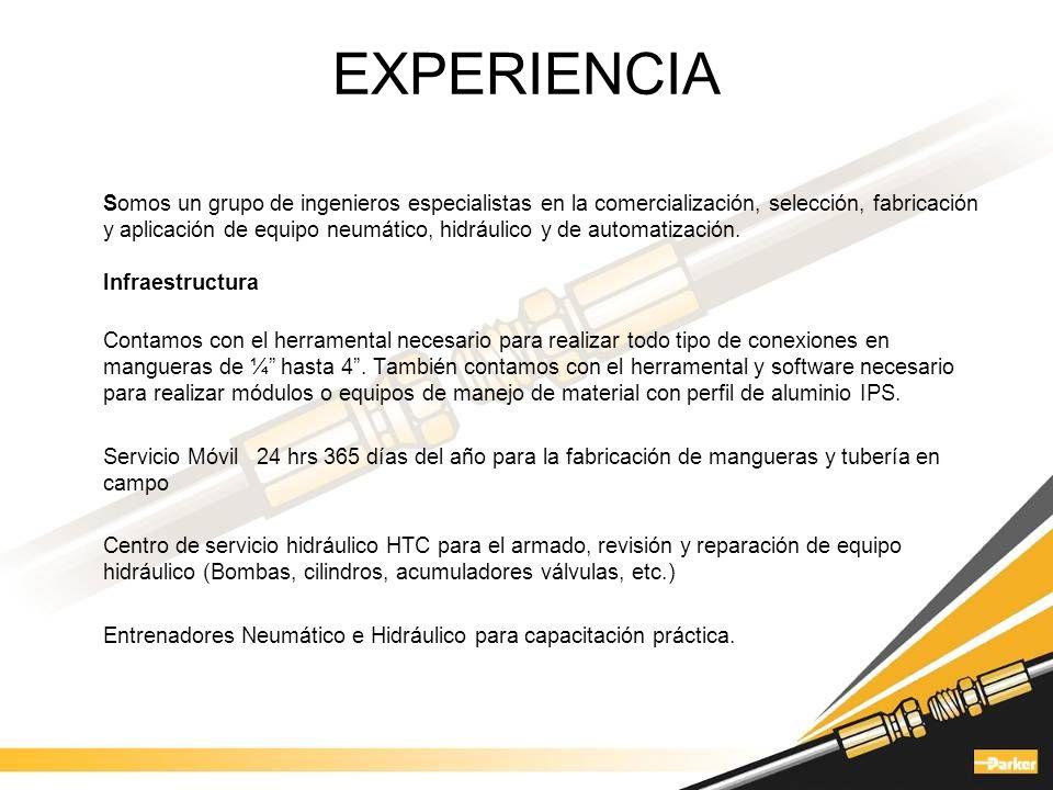 EXPERIENCIA