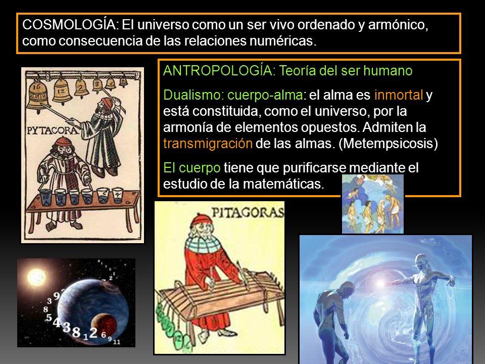 COSMOLOGÍA: El universo como un ser vivo ordenado y armónico, como consecuencia de las relaciones numéricas.