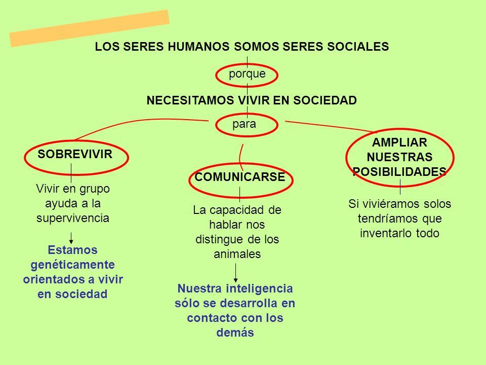 LOS SERES HUMANOS SOMOS SERES SOCIALES