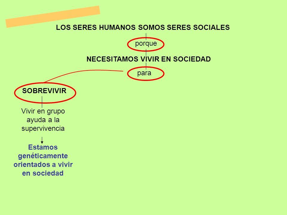 Estamos genéticamente orientados a vivir en sociedad