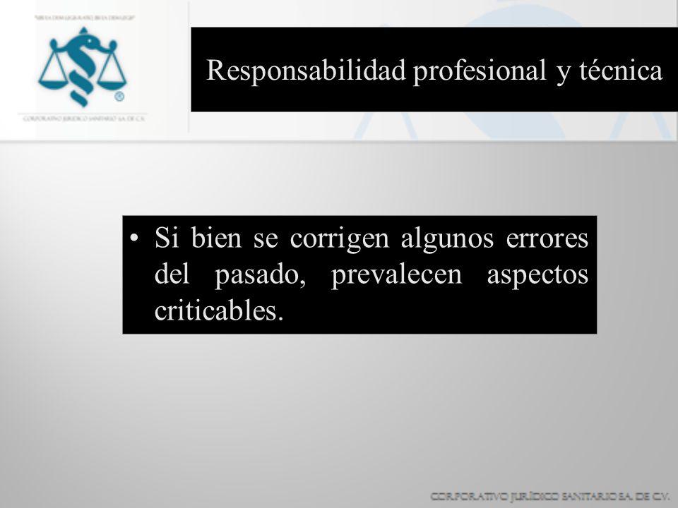 Responsabilidad profesional y técnica
