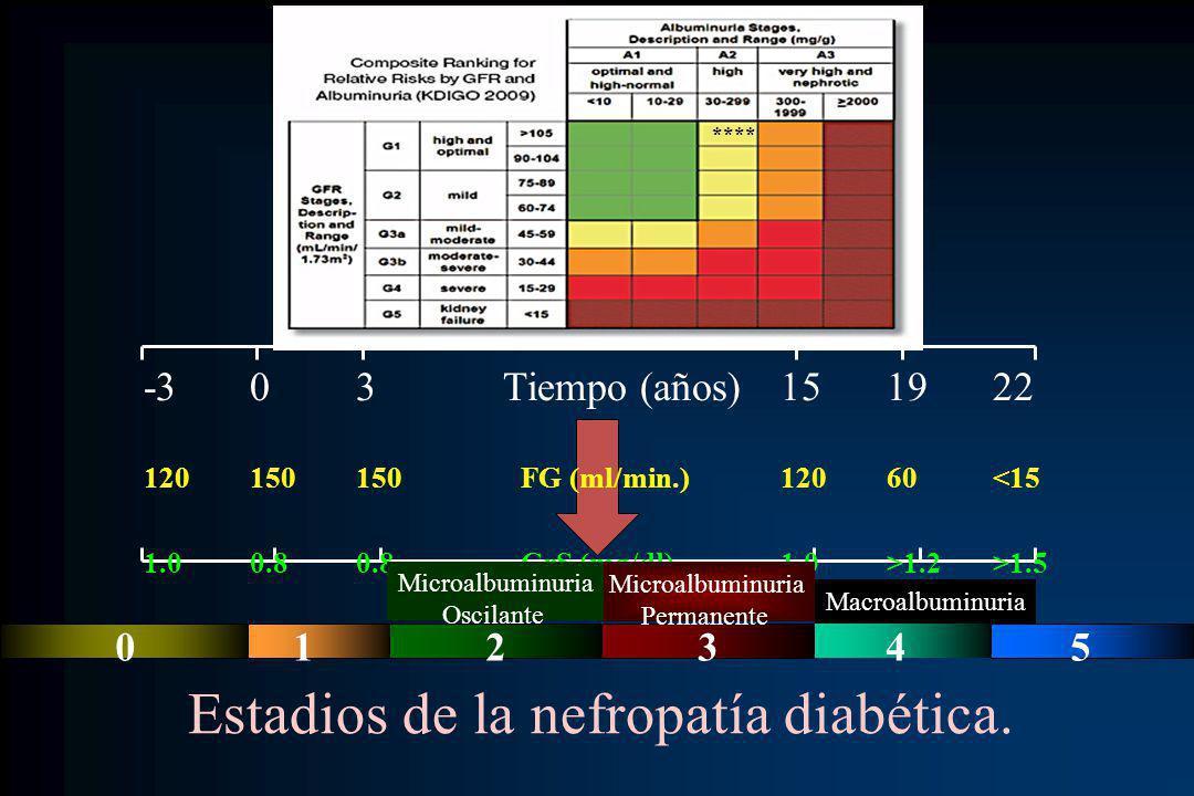 Estadios de la nefropatía diabética.