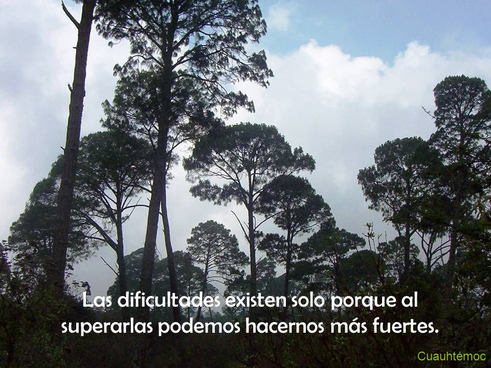 Las dificultades existen solo porque al superarlas podemos hacernos más fuertes.