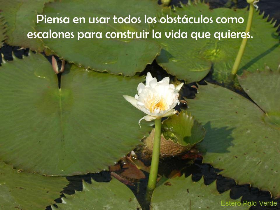 Piensa en usar todos los obstáculos como escalones para construir la vida que quieres.