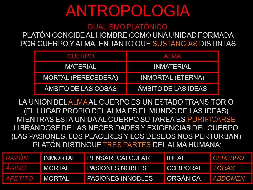 ANTROPOLOGIA DUALISMO PLATÓNICO