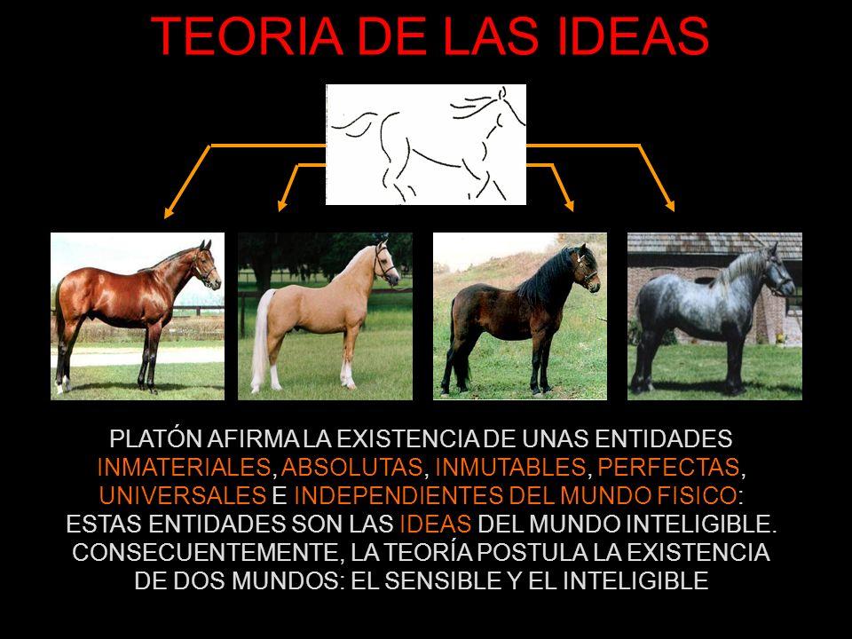 TEORIA DE LAS IDEAS PLATÓN AFIRMA LA EXISTENCIA DE UNAS ENTIDADES