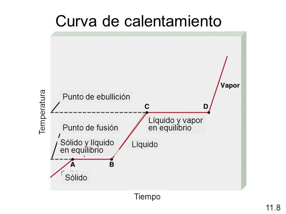 Curva de calentamiento