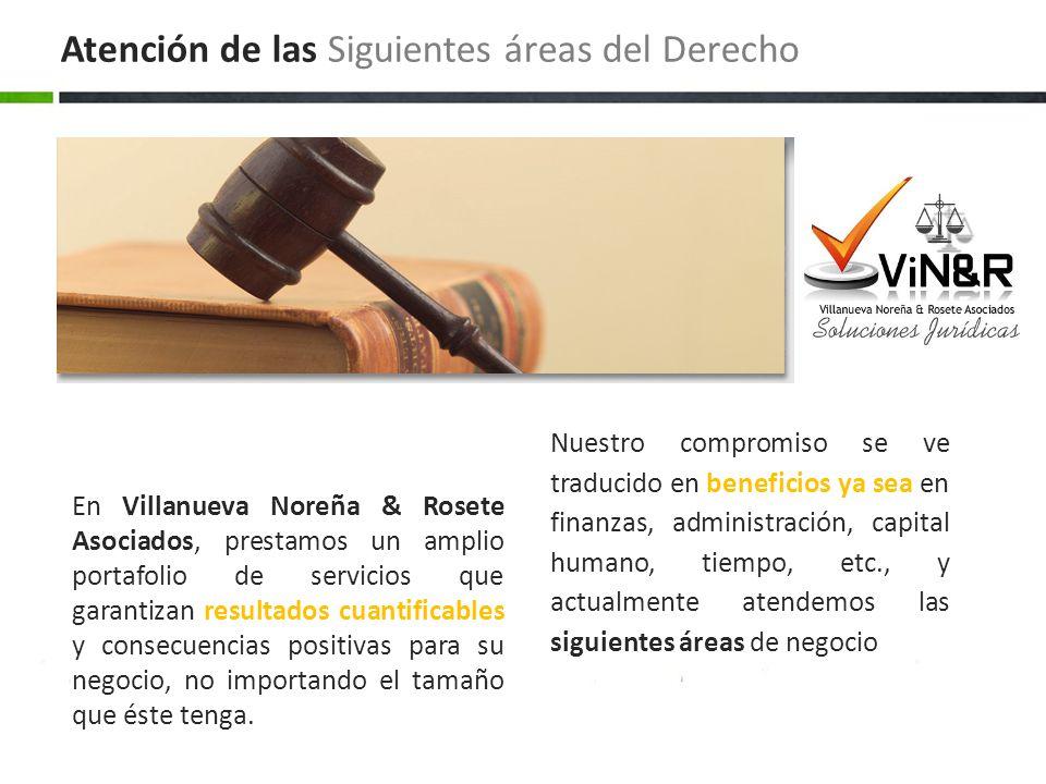 Atención de las Siguientes áreas del Derecho