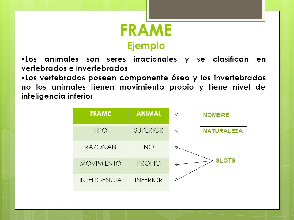 FRAME Ejemplo Los animales son seres irracionales y se clasifican en vertebrados e invertebrados.