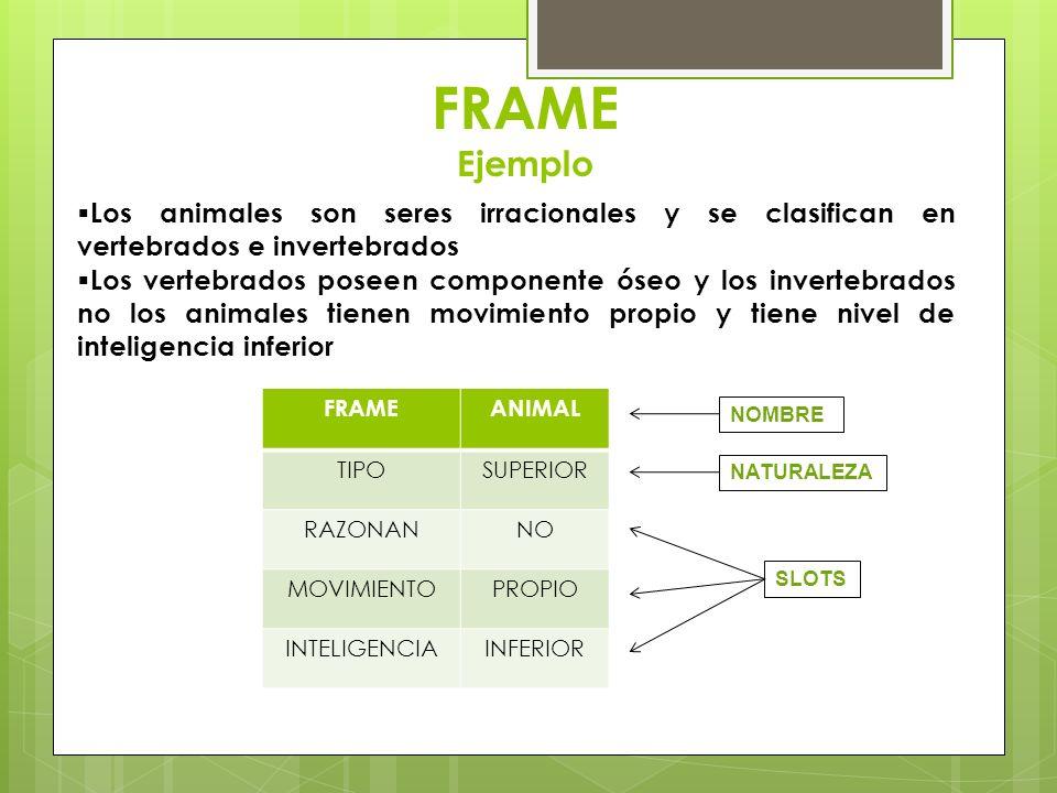 FRAME EjemploLos animales son seres irracionales y se clasifican en vertebrados e invertebrados.