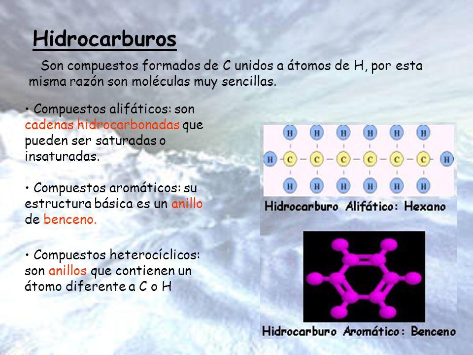 Hidrocarburos Hidrocarburos