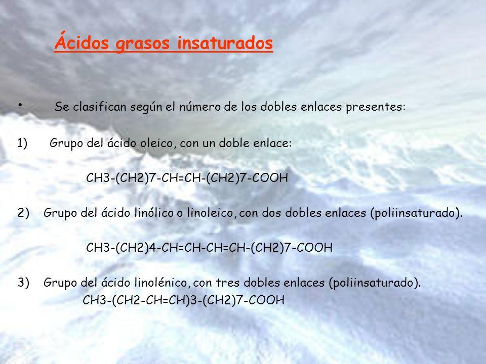 Ácidos grasos insaturados